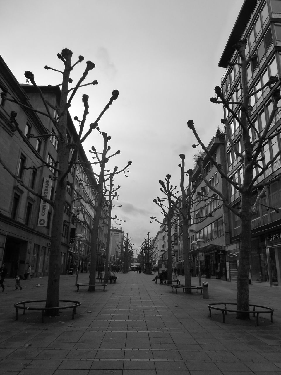 building exterior, architecture, built structure, the way forward, outdoors, sky, city, no people, day, bare tree