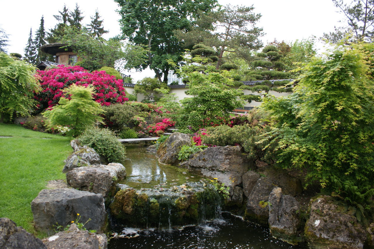 Asian Garden Asian Park Lush Foliage Peace And Tranquility Stream Tranquility Parks And Pond