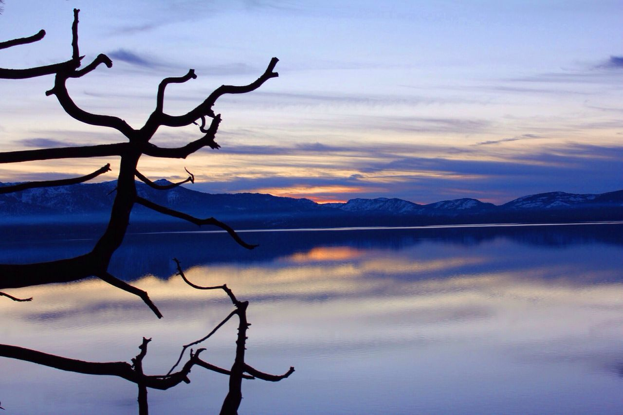 Lake Tahoe, I miss you. Lake Scenics Tranquil Scene Sunset Atmosphere Tranquility Reflection Water Lake Branch Beauty In Nature Majestic Cloud - Sky Silhouette Dramatic Sky Idyllic Mountain Dead Tree Sky Atmospheric Mood Bare Tree