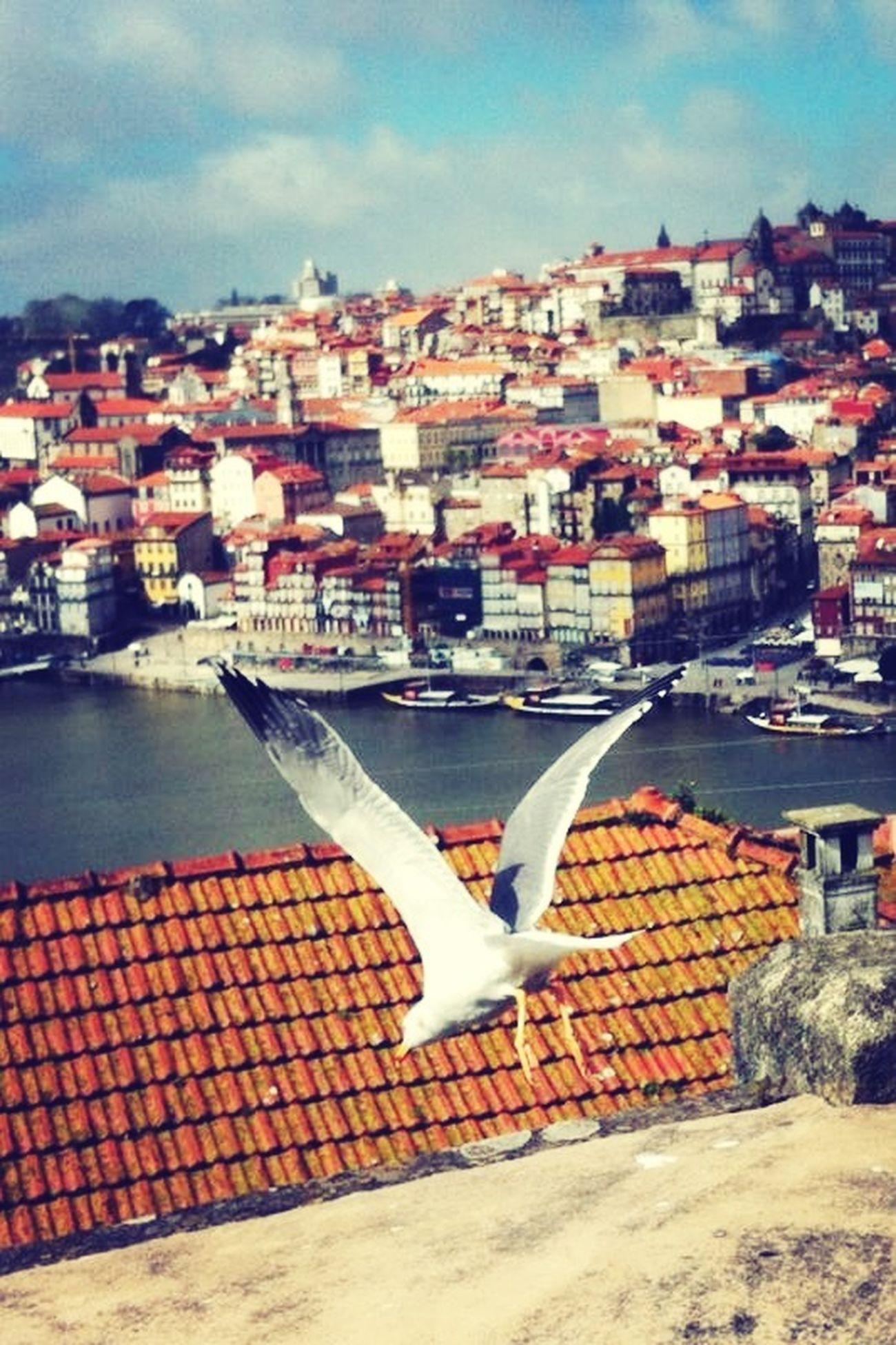Unique Moments Portugal