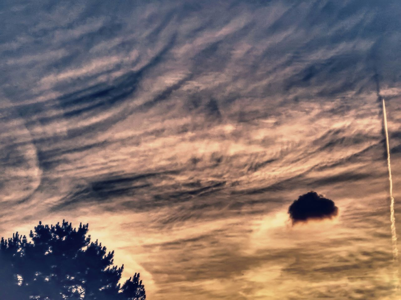 sunset, sky, low angle view, tree, cloud - sky, no people, silhouette, nature, beauty in nature, tranquility, tranquil scene, scenics, outdoors, day