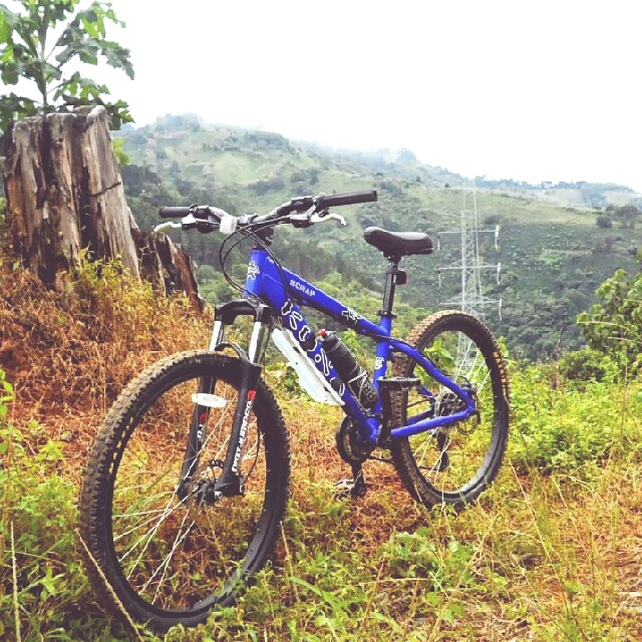 bicycle, day, nature, transportation, adventure, outdoors, mountain bike, no people, mountain, tree, landscape, grass, sky