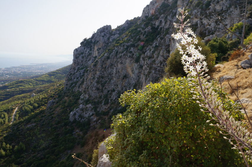 Cyprus Girne Kyrenia Mountains Beauty In Nature Cliff Day Growth Landscape Mountain Mountain Range Nature No People North Cyprus Outdoors Plant Scenics Sky Tranquility