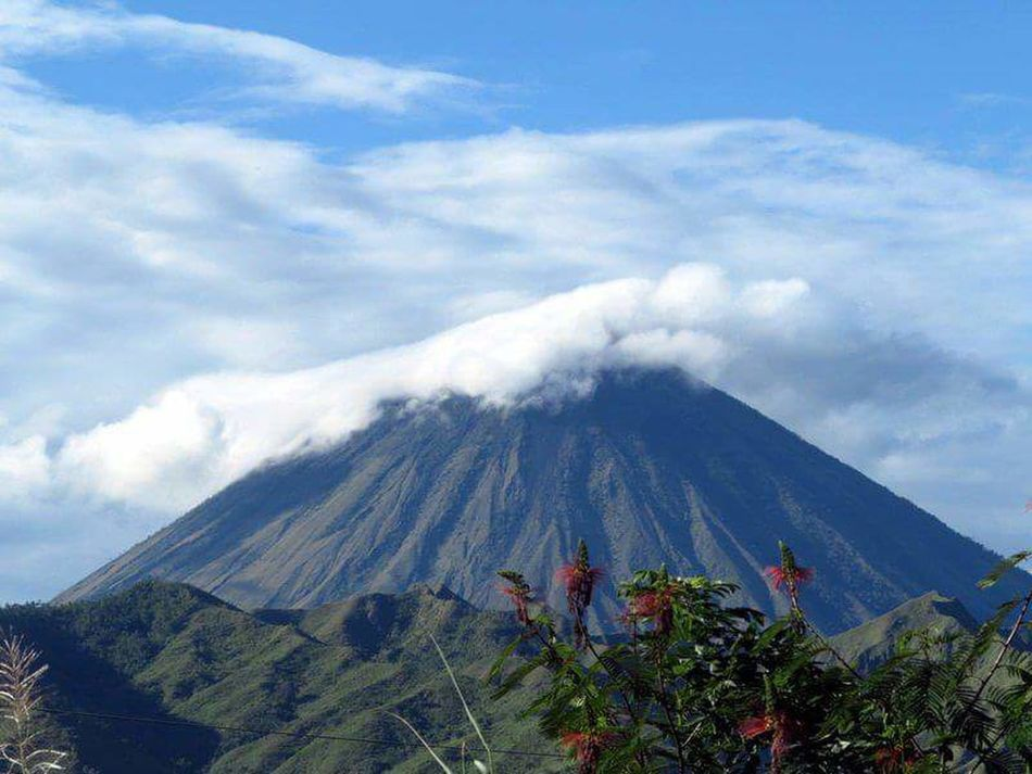 Volcano Cloud - Sky Sky Nature Mountain Tree Outdoors Landscape Day No People Tea Crop Blue INDONESIA Flores Travel Destinations Plant Scenics Beauty In Nature Nature Tree Sunny Vacations Sunlight
