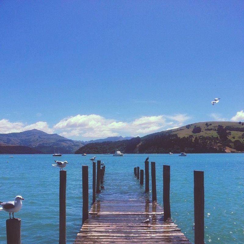 Akaroa Christchurch Chc Seaside frenchstyle newzealand0nz 2015 travel