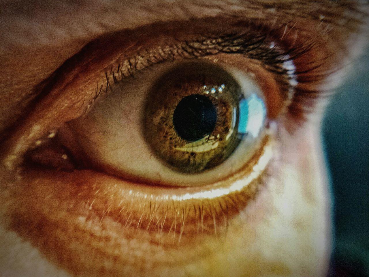 Eyelash Close-up Eyesight Iris - Eye Eyeball Human Eye Sensory Perception Macro_captures Macro_perfection Personal Perspective EyeEm Masterclass Samsung Galaxy S4 Capture The Moment Focus On Foreground From My Point Of View Eye4photography  EyeEm Best Shots EyeEm Macrophotography