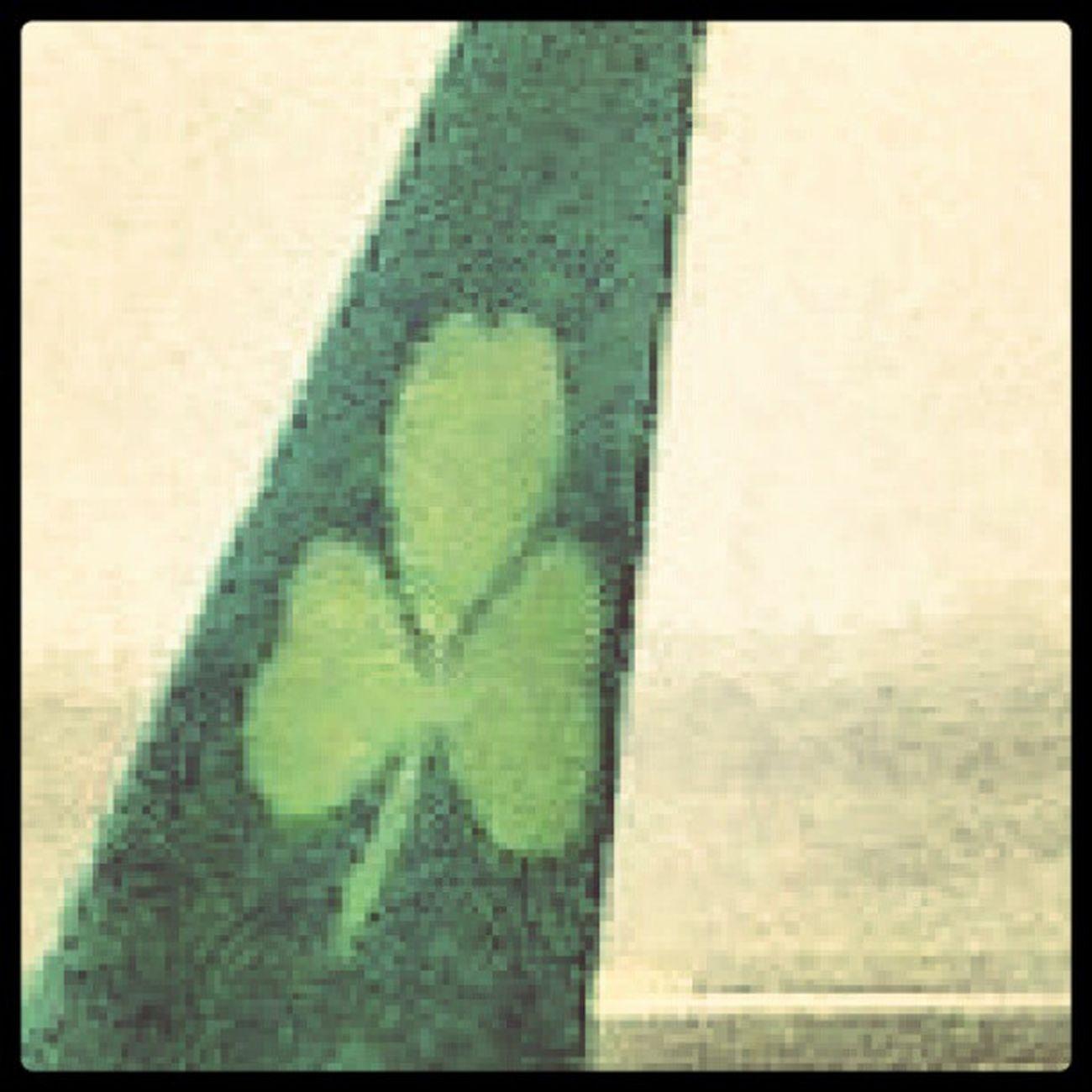 ab geht's.... Sklirland Sklfamily Airport Airlingus