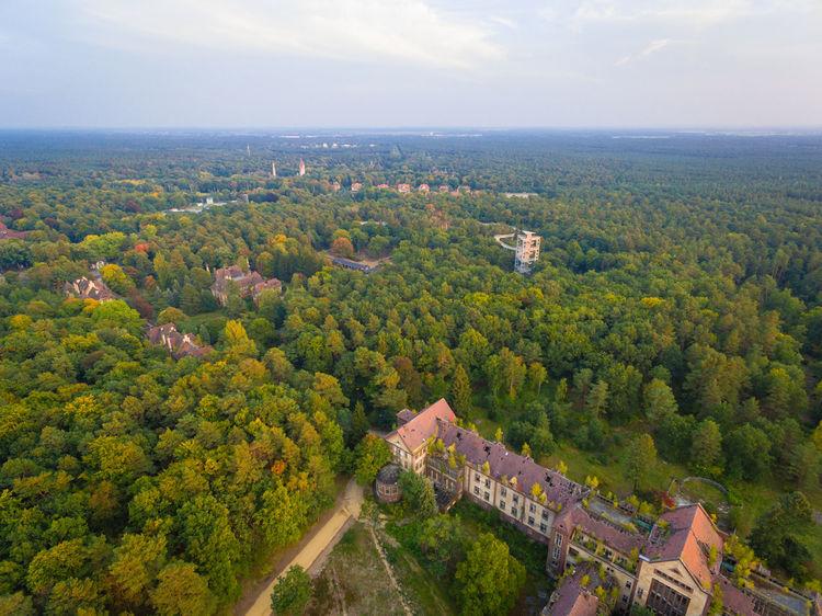 Airteam Baum & Zeit Baumkronenpfad Beelitz Heilstätten Beelitzer Heilstätten DJI Phantom 3 Professional Drone  Lost Places Sky