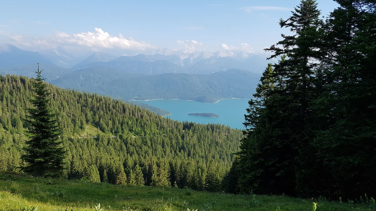 Blauesland Mountain Tree Nature Betterlandscapes Sky Outdoors Wanderlust Alps No People Day Grass Forest Clouds And Sky Bergsee Berge Scenics Pinaceae Mountain Range Tree Area Jochberg Walchensee Sunlight Shadow Bavaria