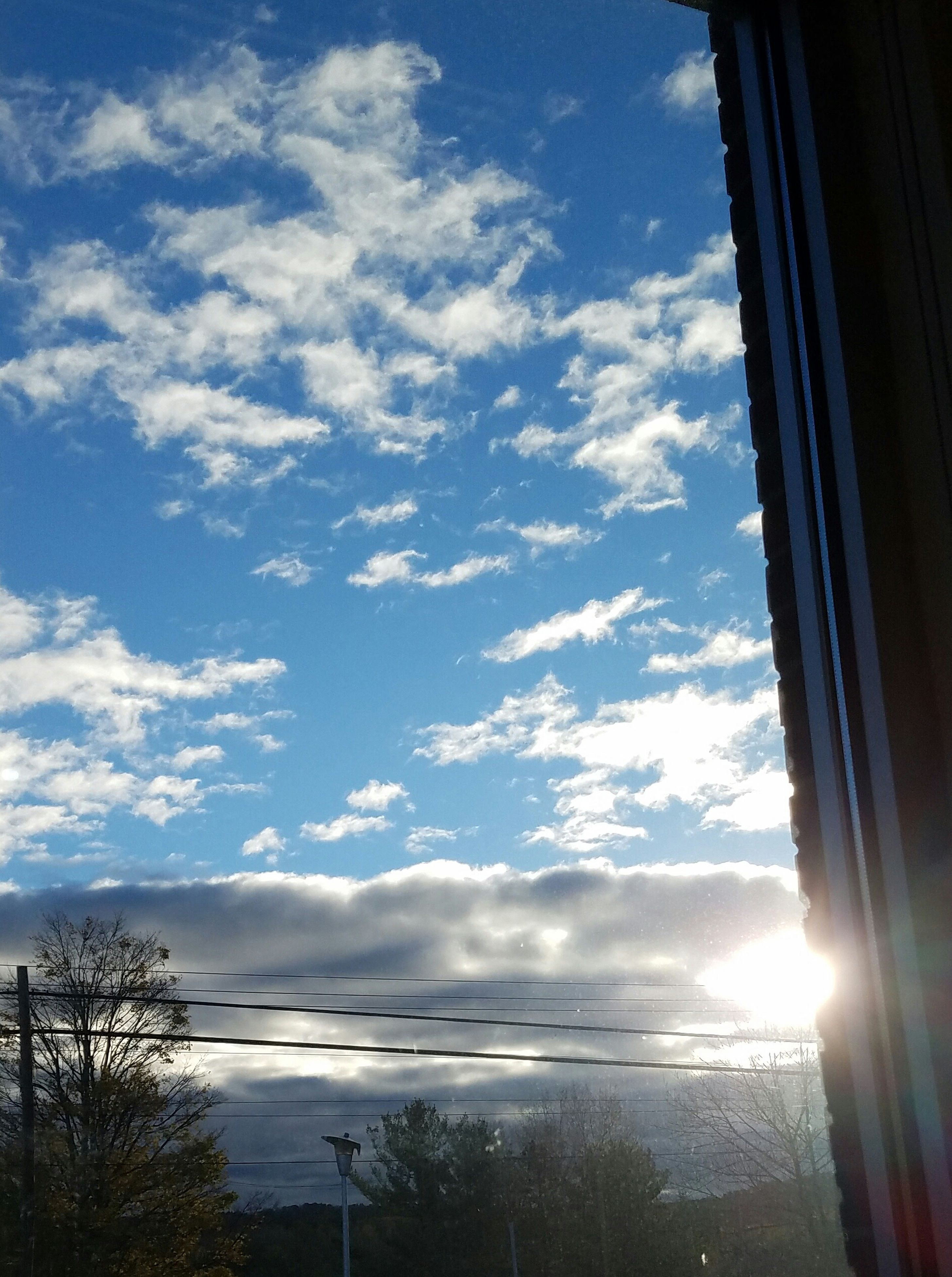 sky, cloud - sky, no people, tree, low angle view, day, outdoors, nature