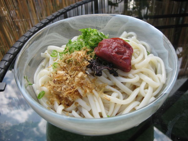 Bowl Cold Noodles Food Freshness Home Cooking Japanese Food Meal No People Noodles Sour Plum Udon Noodles 冷やしうどん 梅干し