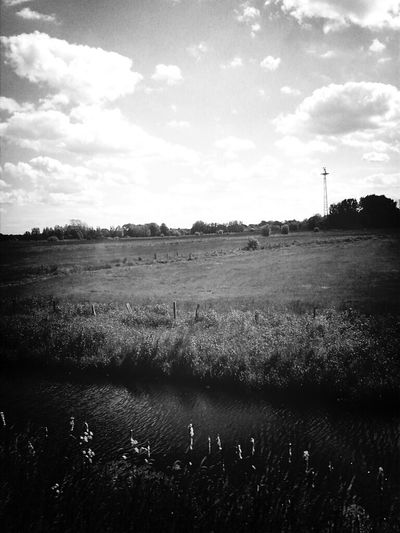 Black And White Landscape Nature_collection