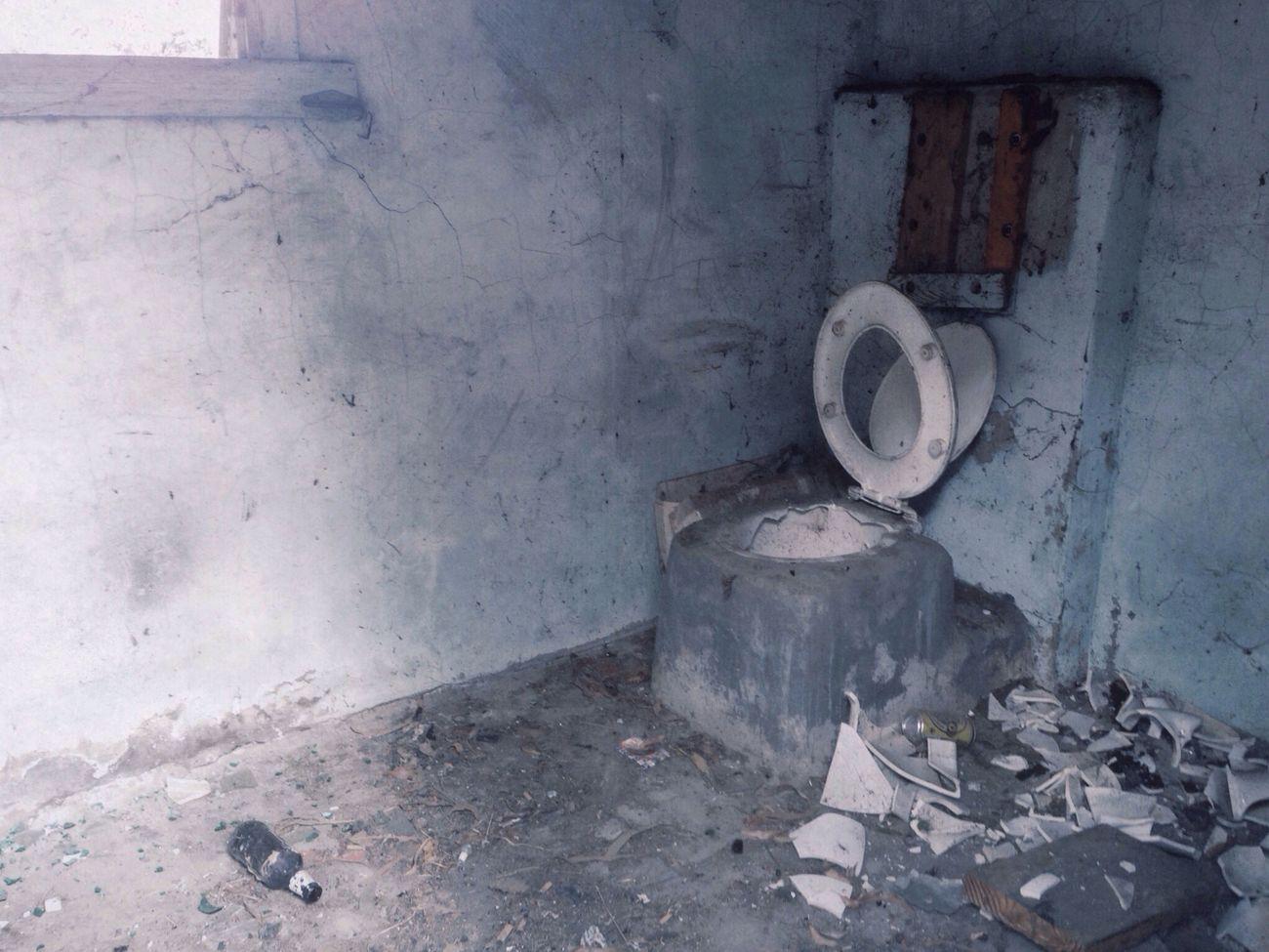 __toilet humour