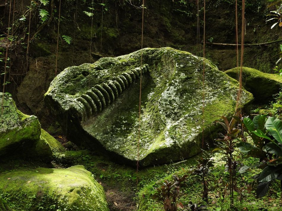Fossilized In TIme ~ Bali Beauty In Nature Day Forest Forestwalk Motion Nature No People Outdoors River Rock - Object Rubble Statue Stone Material Tree Tusk Water Waterfall Watermill