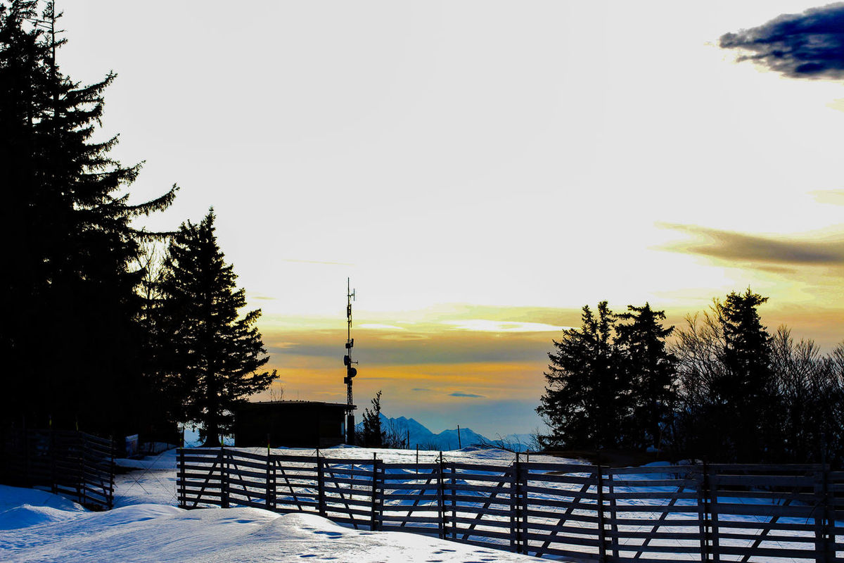 Tree Sunset Sky Nature Winter Snow Beauty In Nature Outdoors Travel Destinations Silhouette Cold Temperature No People Scenics Day Gaisberg Austria Landscape Mountain Mountain Range Travel