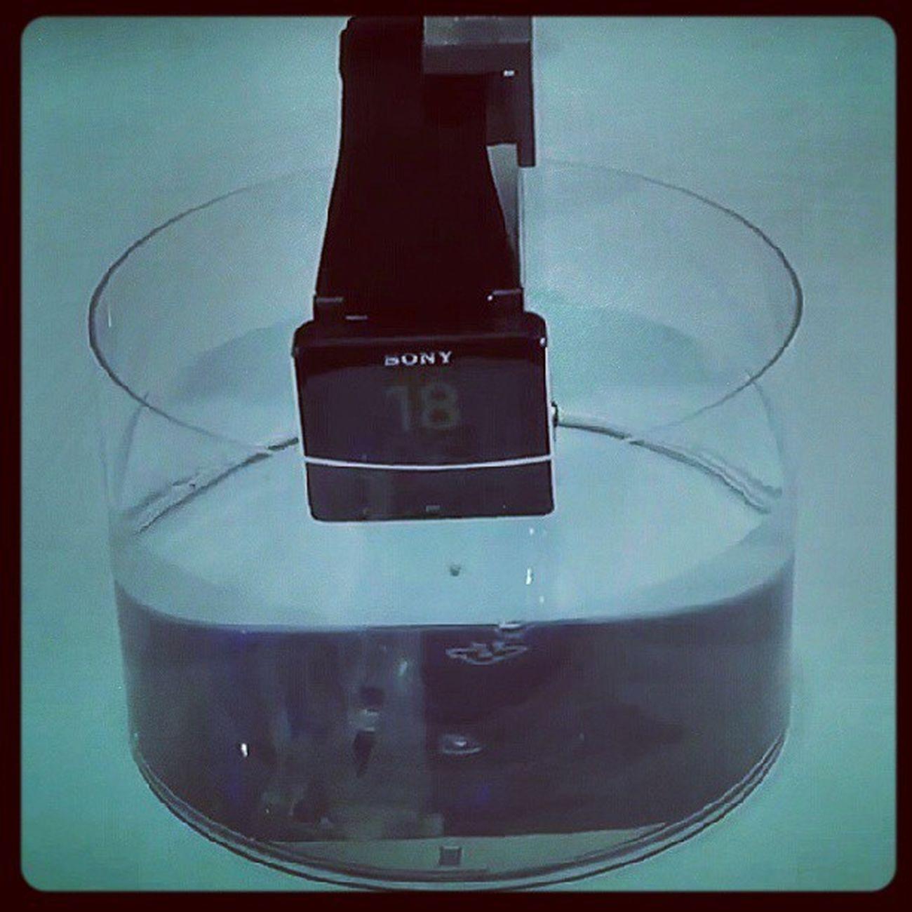 Sony Smartwatch2 SonySmartWatch2 Ifa2013 IFA