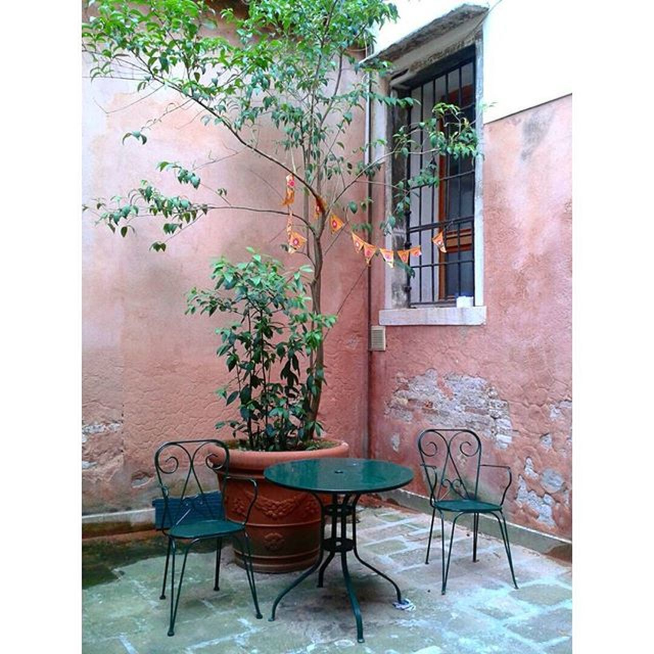 architecture, chair, building exterior, table, built structure, no people, plant, outdoors, day