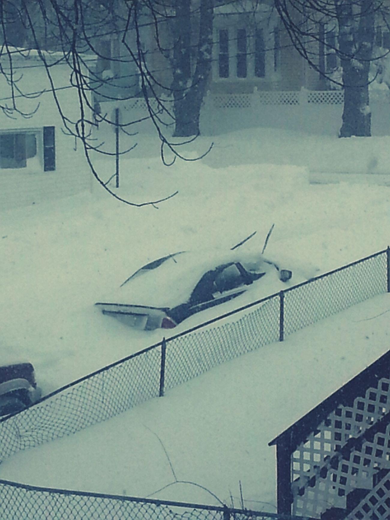 Snow Day ❄