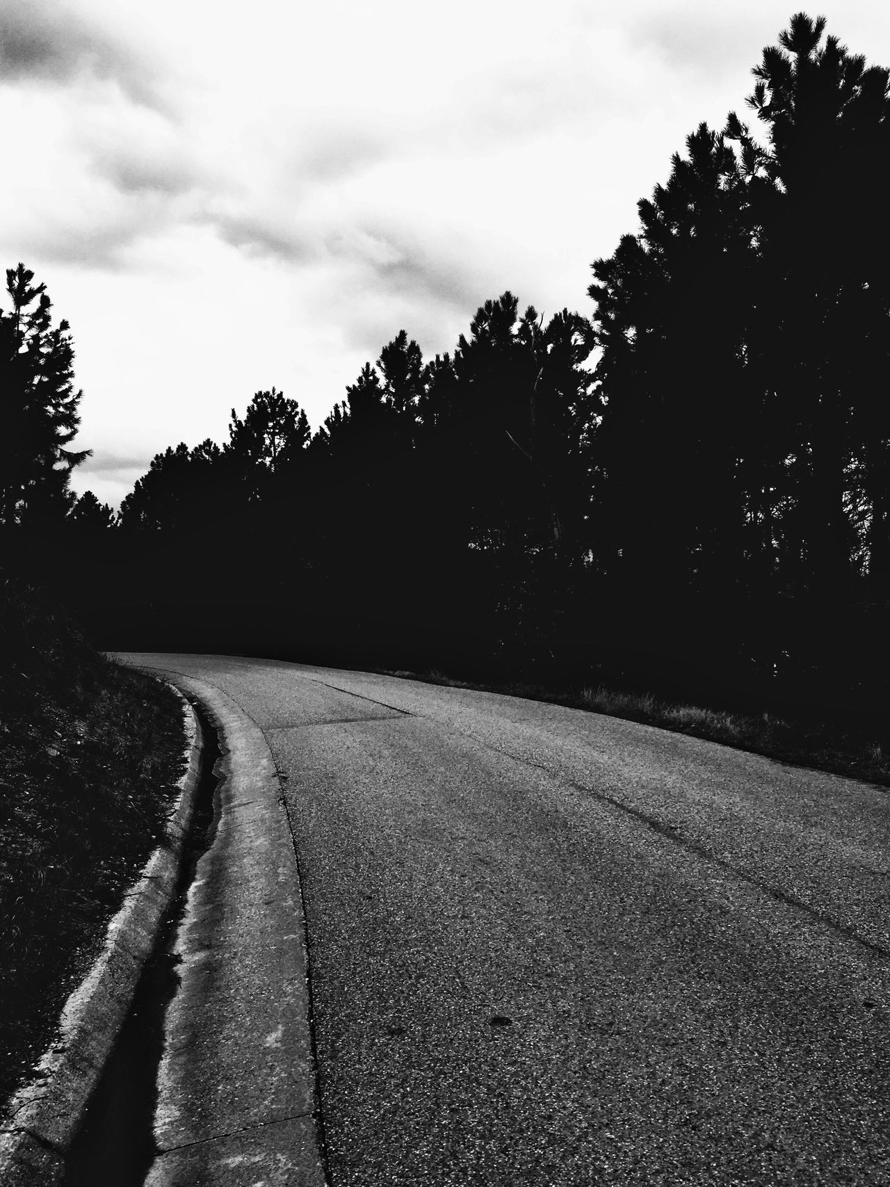 On the road ... Empty Road The Way Forward No People Bnw_captures Bnw_collection Blackandwhite Photography Blackandwhite