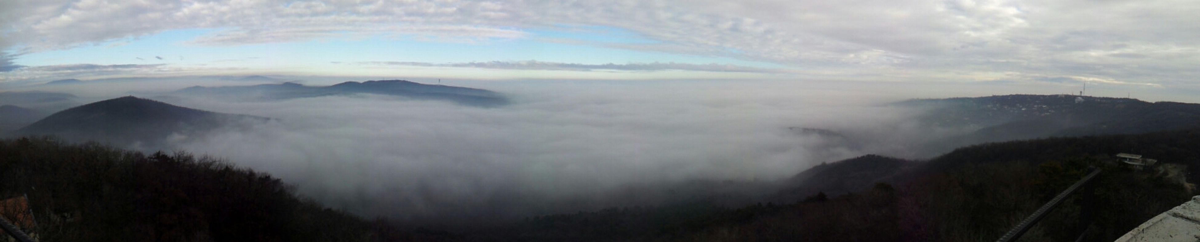 Fog Trekking