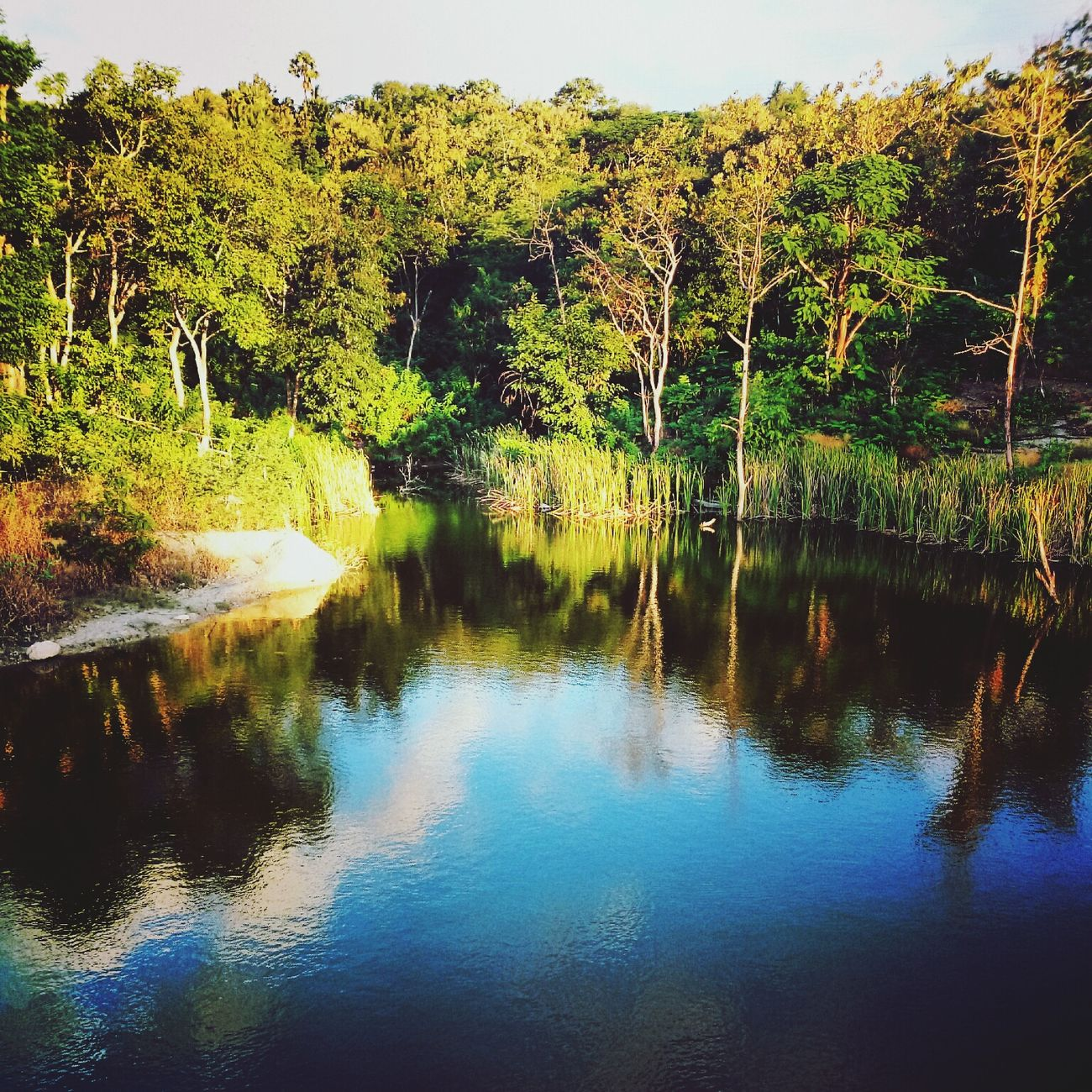 Reflections Lake View Xttaordinarynoya