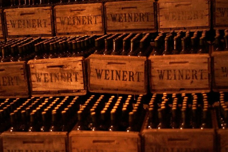 Old Bottles Wine Wine Bottles Wine Tasting Camino Del Vino Mendoza Old Things Vintage Moments