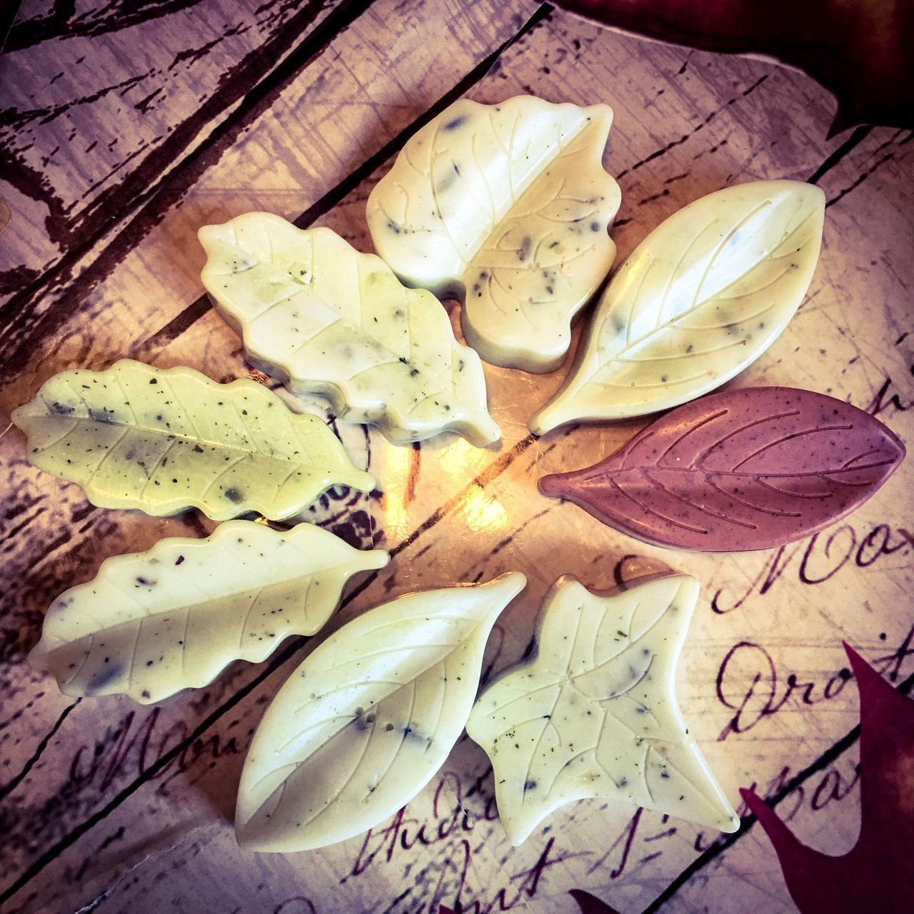 High Angle View Close-up Leaf Nature Fragility Still Life Soap Homemade