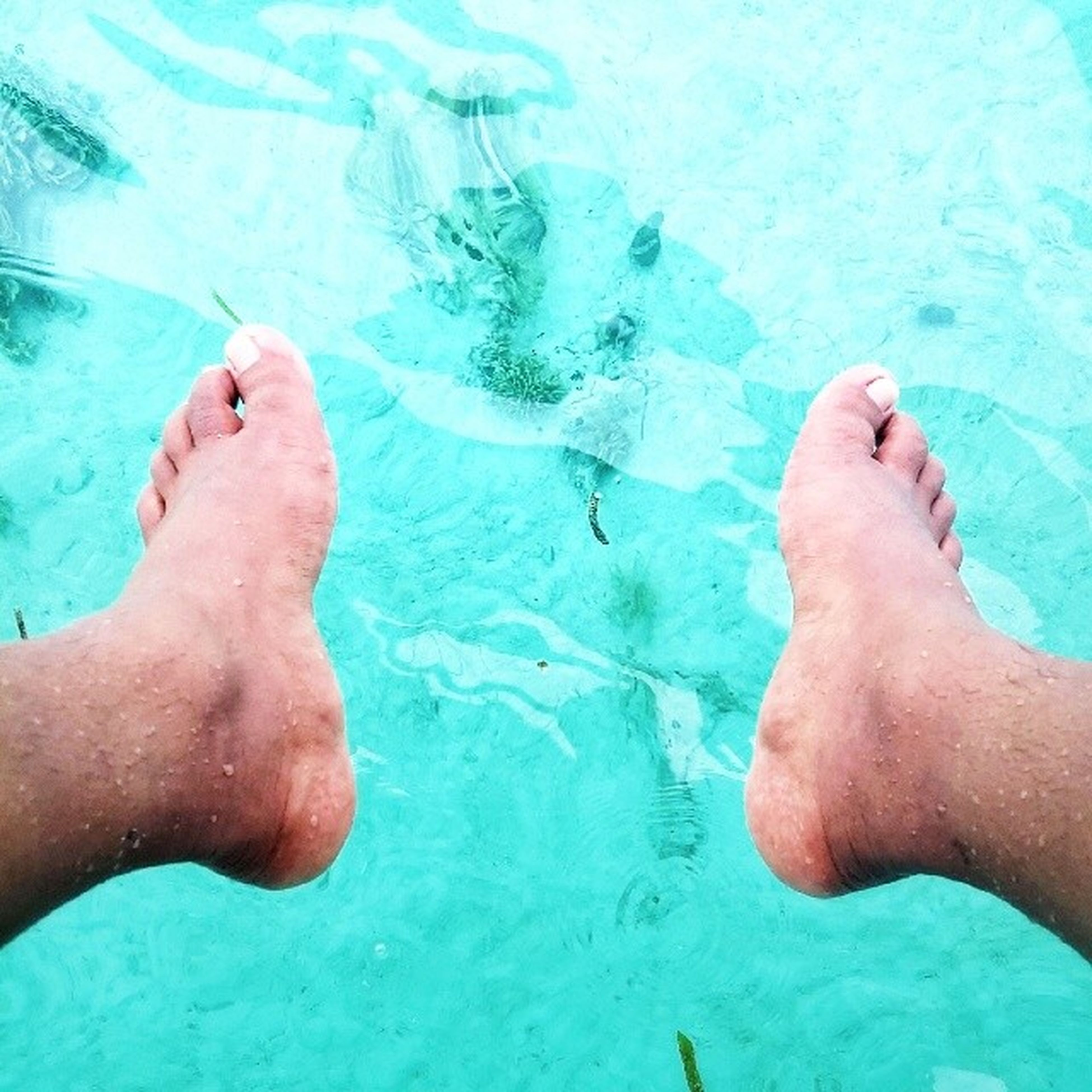 water, low section, person, barefoot, swimming pool, human foot, personal perspective, leisure activity, lifestyles, blue, high angle view, sea, part of, turquoise colored, unrecognizable person
