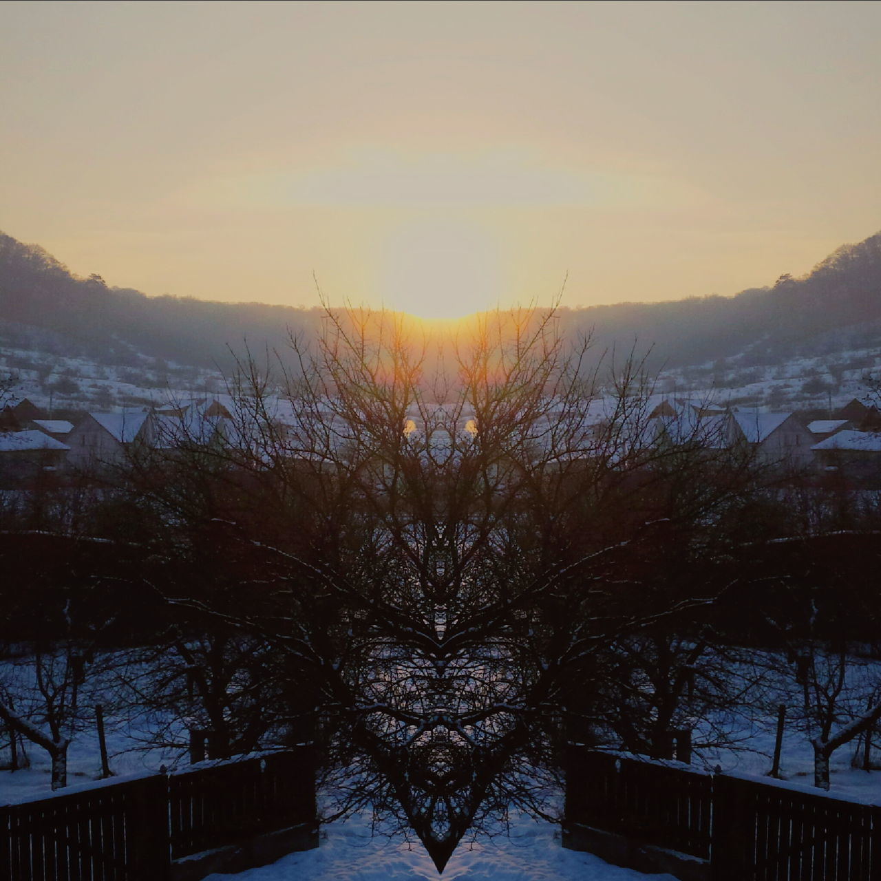 Sunset Tree Sky Winter Nature Cold Temperature No People Snow Day Monster Face