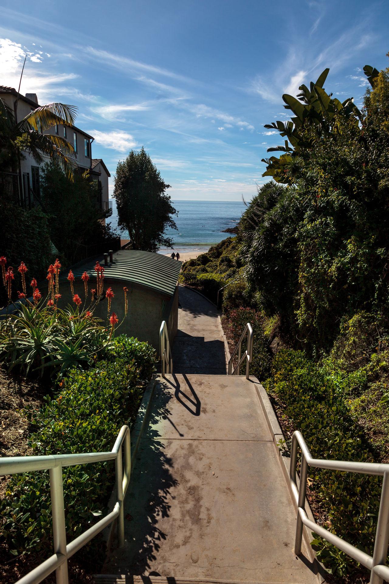 Steps to Shaw's Cove Beach in Laguna Beach, California, USA Beach Day Garden Laguna Beach, CA Nature No People Ocean Ocean View Outdoors Shaws Cove Sky Stairs Stairway Steps Tree