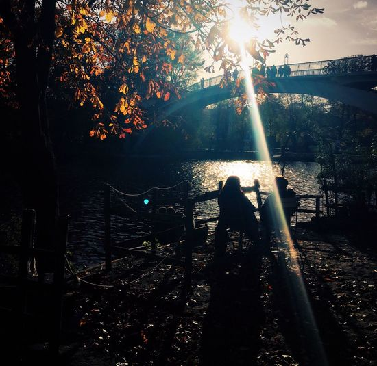 Autumn Atmosphere Treptower Park Insel Berlin Insel Der Jugend People Photography People Light And Shadow Sunlight Berliner Ansichten Berlin Photography See The World Through My Eyes Photolove Outdoors Enjoying Life Beauty In Nature Photooftheday Berlin