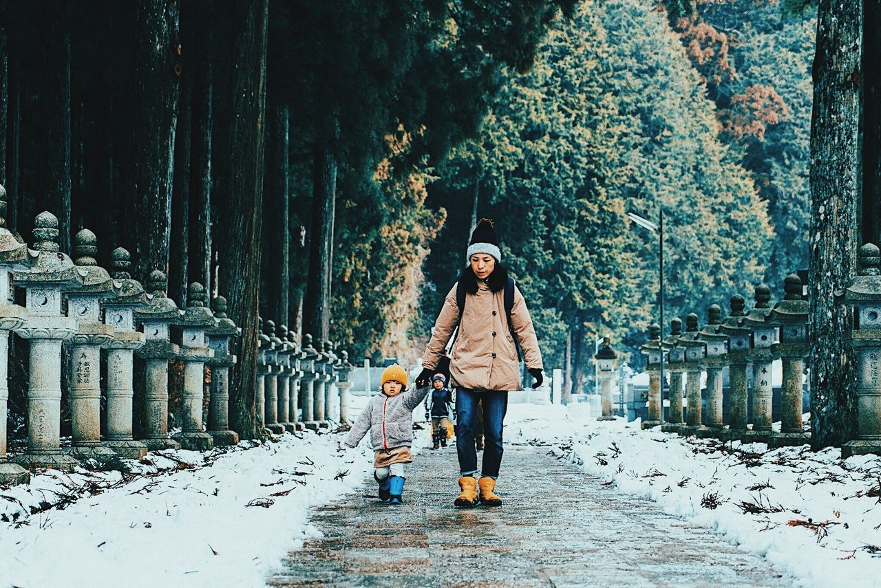 Wakayama, Japan 2017 Winter Cold Temperature Walking Snow Outdoors Welcome Weekly 日本 Japan Japanese Culture Leisure Activity