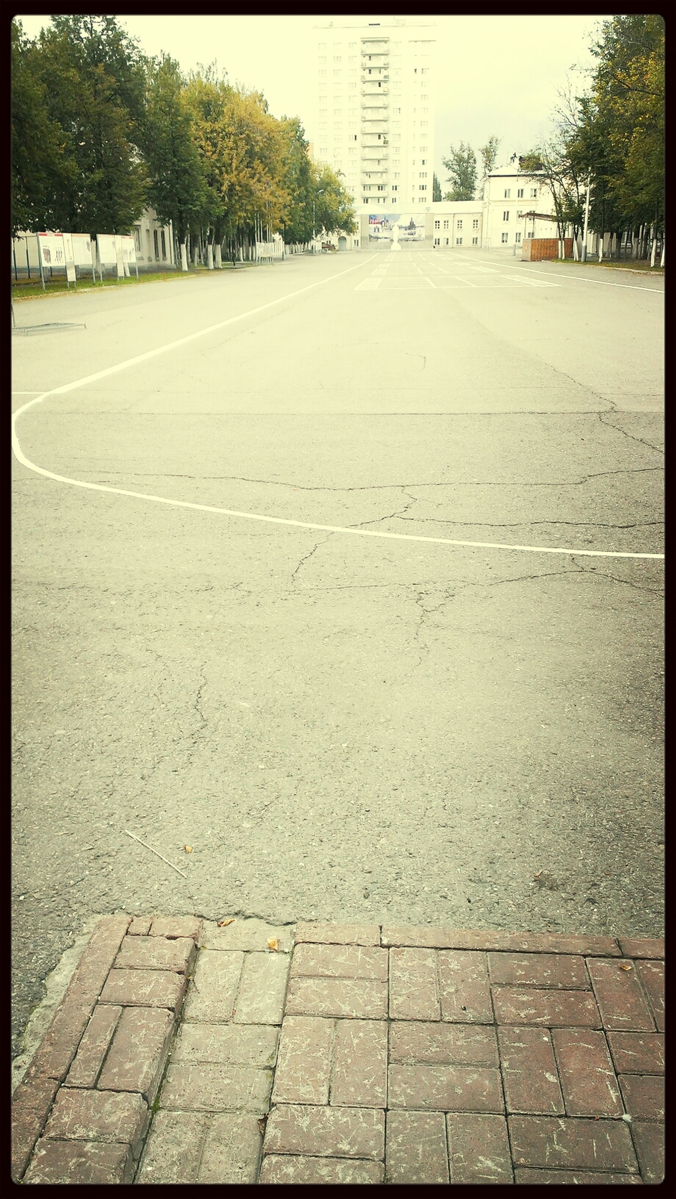 transfer print, the way forward, auto post production filter, diminishing perspective, building exterior, street, built structure, architecture, road, cobblestone, footpath, tree, vanishing point, day, empty, walkway, sunlight, outdoors, transportation, sidewalk