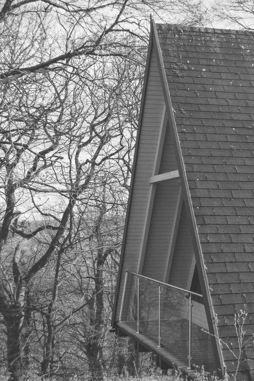 A-frame Architecture Bare Tree Black & White Black And White Branch Building Exterior Built Structure Day Light And Shadow Monochrome Nature No People Outdoors Roof Timber Framed Tree The Architect - 2017 EyeEm Awards