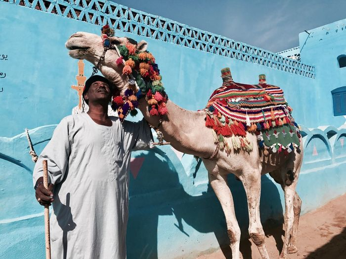 The blue city Style Colors Adventure Animal Camel Travel Egypt Aswan Blue Human Outdoors Day Leisure Activity Animal Themes Statue Architecture Mammal Domestic Animals Sky EyeEmNewHere