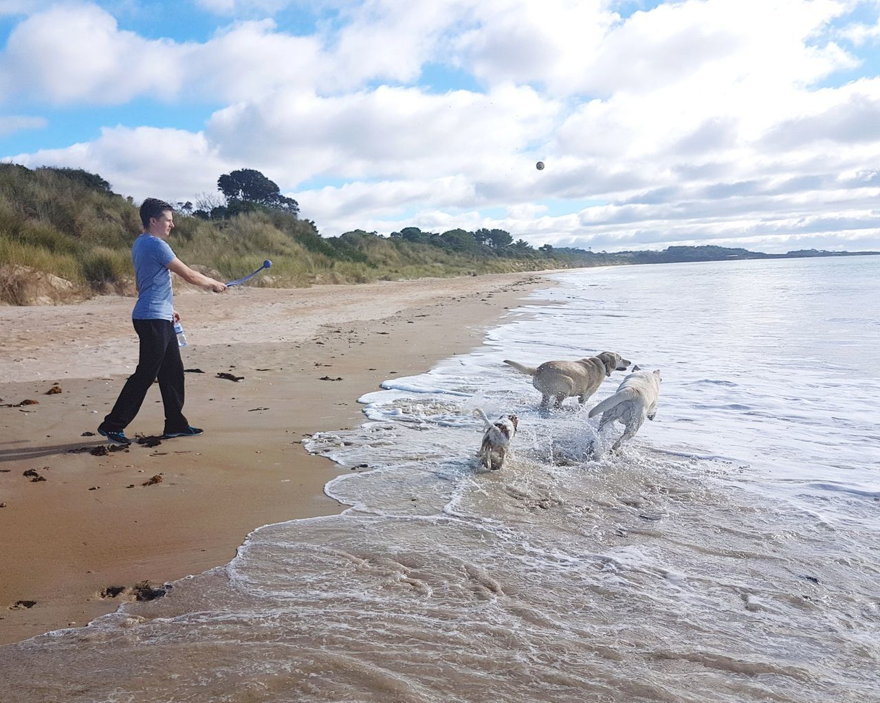 Full Length One Man Only Beach People Sea Standing Happiness Dogs EyeEmNewHere Coastline Real People Australian Landscape Australian Australia Outdoors Nature Day Water Vacations Horizon Over Water Dog Labrador Throwing  Ball Happy