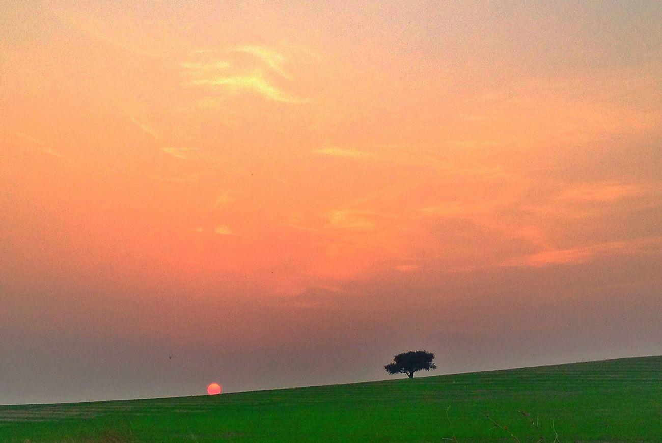 Sun Sunset Akhisar Manisa