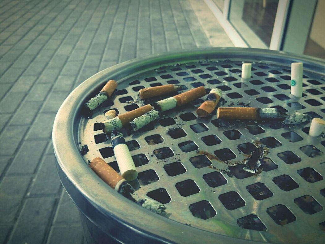 Cigars Ashes Cigarrillo Cigarsociety Cigarporn