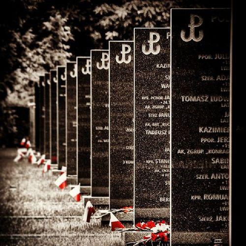 Wwa Warsaw Poland Pamiętamy Cmentarz War