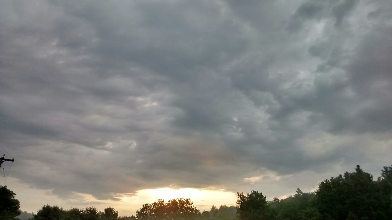 cloud - sky, tree, sky, nature, beauty in nature, dramatic sky, sunset, tranquility, tranquil scene, scenics, no people, storm cloud, outdoors, low angle view, day