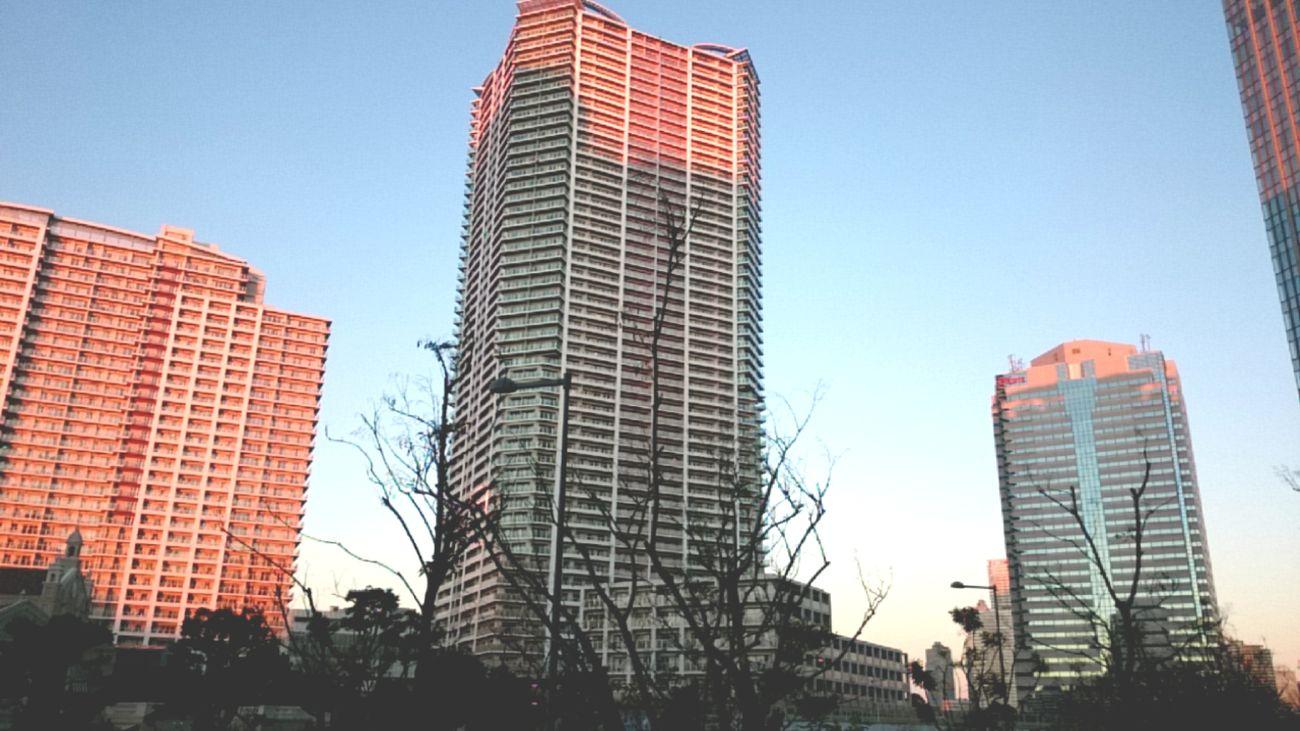 City Architecture Sky Built Structure Toyosu Tokyo,Japan