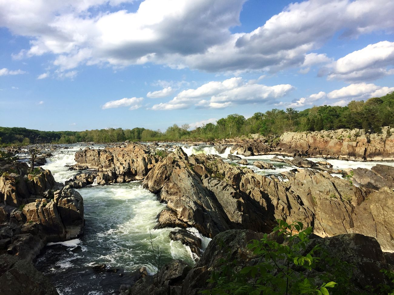 Great Falls Nationalpark Maryland Virginia Waterfall Water Nature Beautiful
