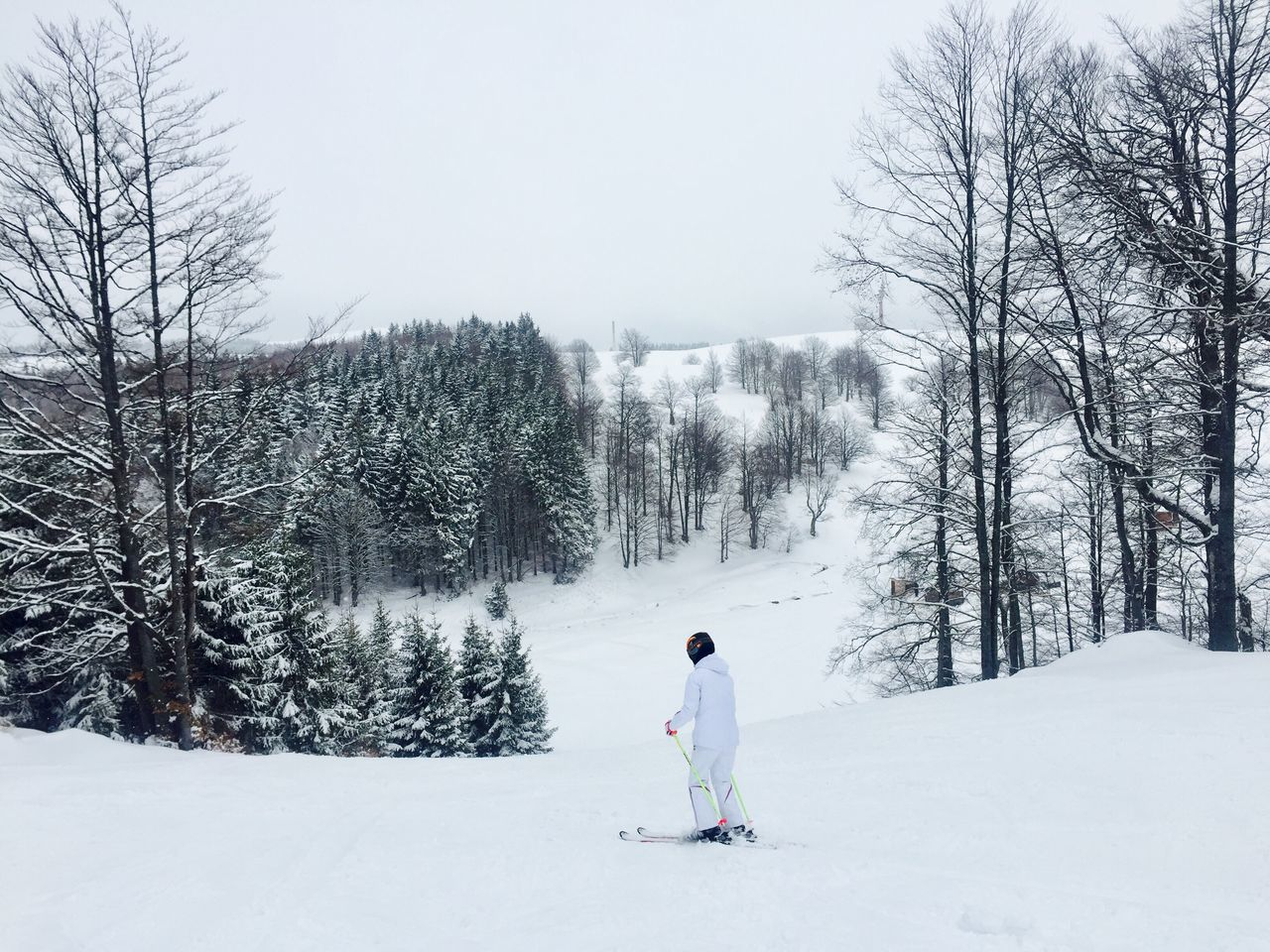 Woman in white skiing on the slope Winter Snow Cold Temperature Tree Real People Lifestyles Nature Weather Bare Tree One Person Leisure Activity Warm Clothing Day Full Length Outdoors Beauty In Nature Landscape Sky Skiing Skier Slope Alone Snow