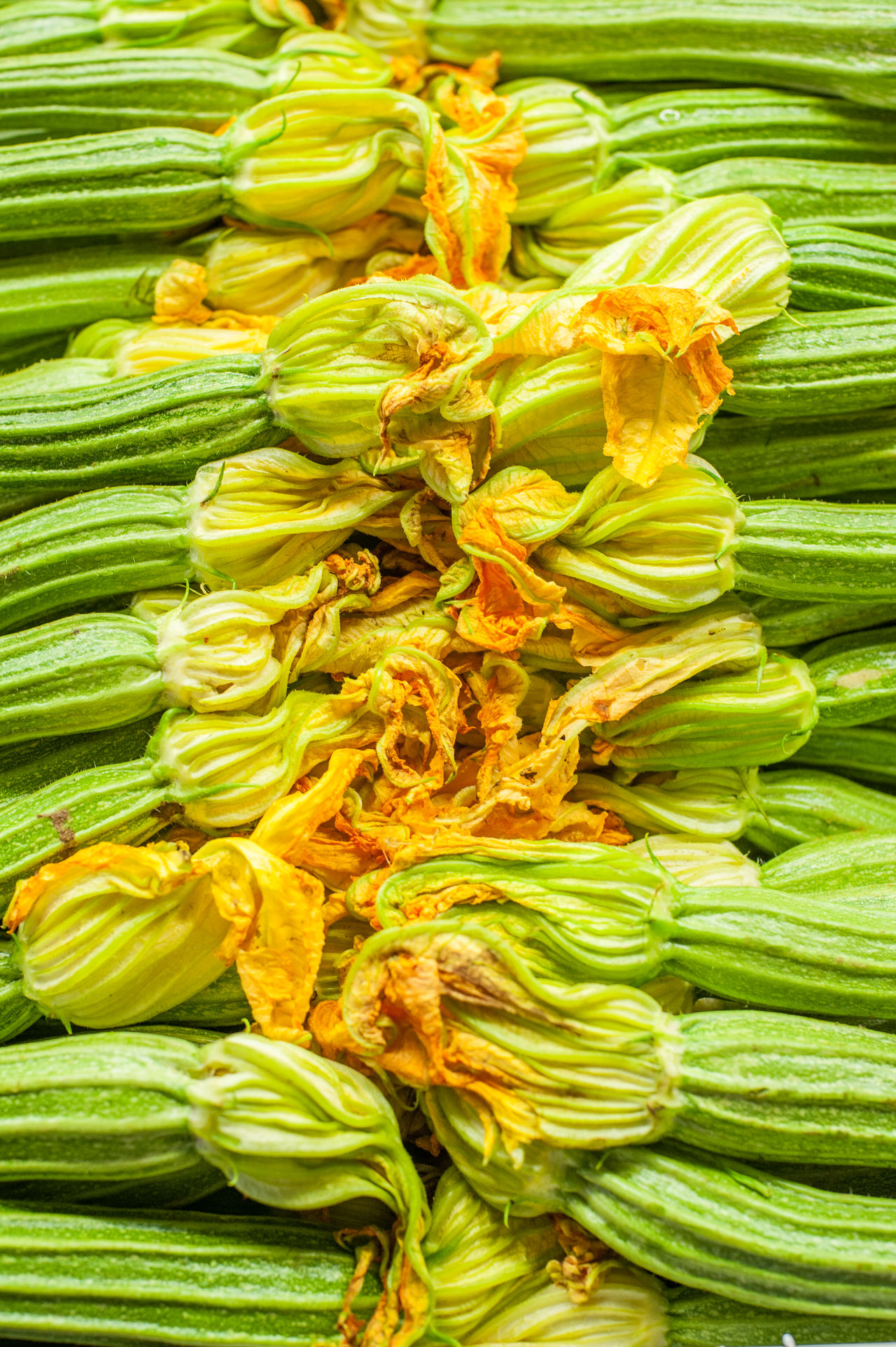 Many green zucchini with flowers on market stall Close-up Courgette Flower Food Fresh Freshness Healthy Eating Many Market Market Stall No People Raw Seasonal Vegetables Zucchini