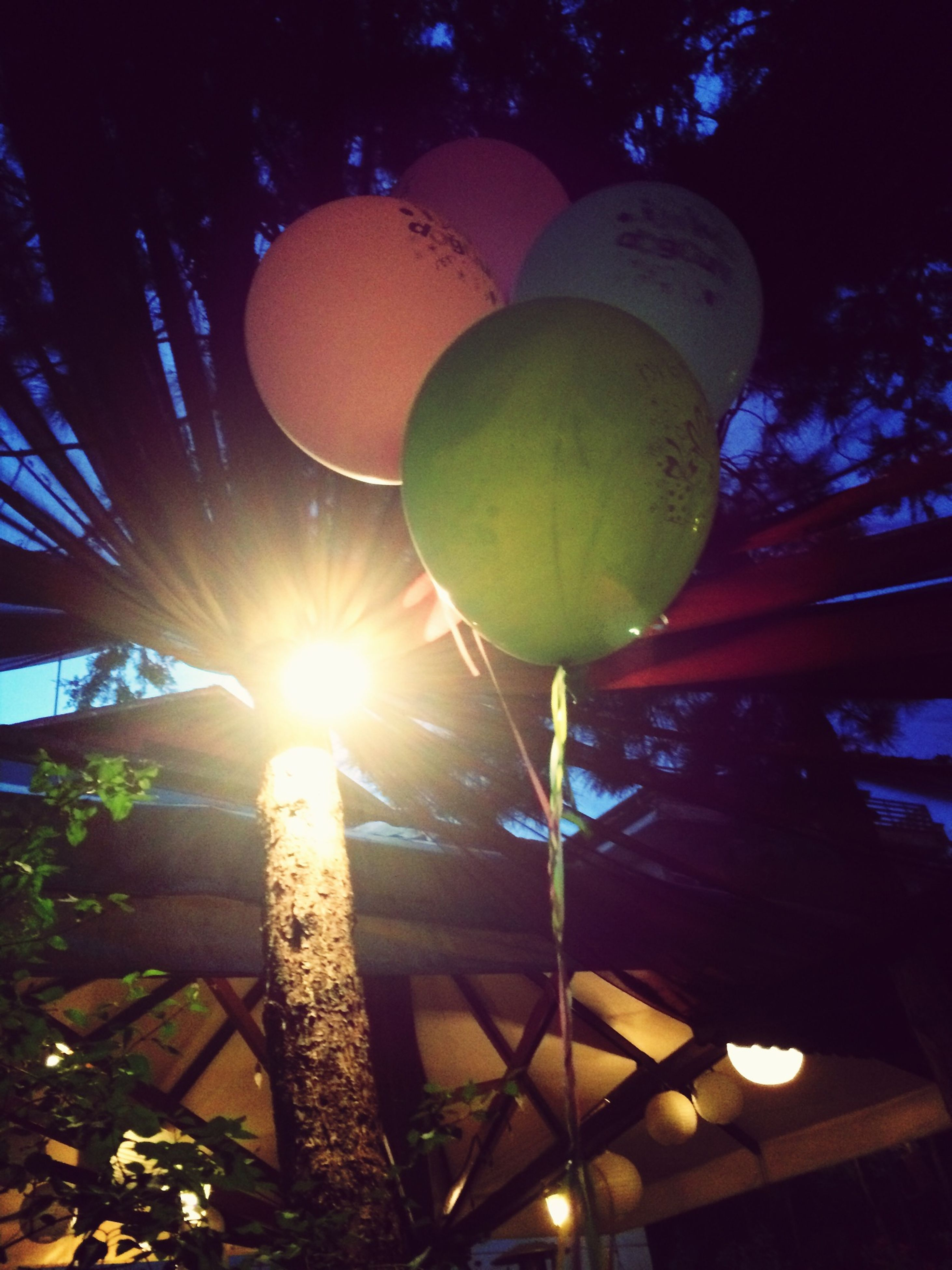 low angle view, illuminated, lighting equipment, tree, hanging, electricity, night, decoration, branch, electric light, glowing, light bulb, electric lamp, light - natural phenomenon, sunlight, street light, no people, sphere, lantern, growth