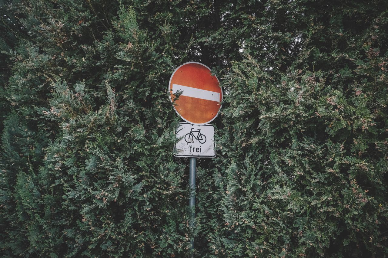 EyeEm Selects warning sign road sign Plant art Art is Everywhere communication Circle Text guidance Growth day Green color outdoors no people Tree Nature Grass
