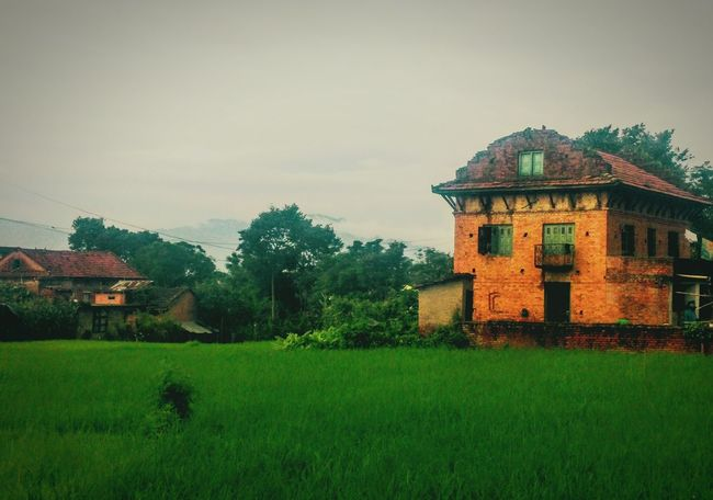 Peace is constructed not fought for 🙏🙏 Rural Scenes Nepal Lalitpurvalley First Eyeem Photo