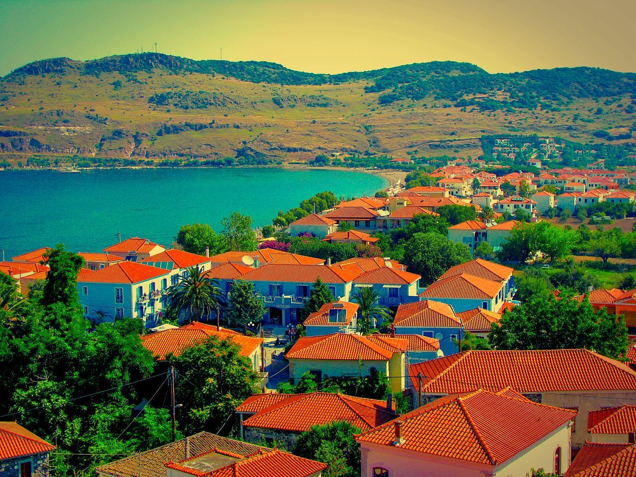 Village Village And Sea Villagescape View From Above View From The Top Village View Greek Village The Great Outdoors - 2016 EyeEm Awards The Architect - 2016 EyeEm Awards Petra Lesvos Island Greek Islands Seaside Village Seeing The Sights Shades Of Red&blue Roofs Red Roofs Houses Shades Of Blue Shades Of Red Summer Memories 🌄 Viewpoints Viewpoint Villages