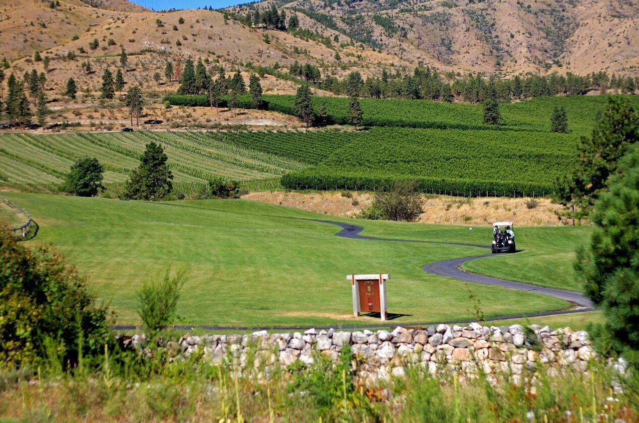 Beautiful stock photos of golf, Agriculture, Chelan, Day, Farm
