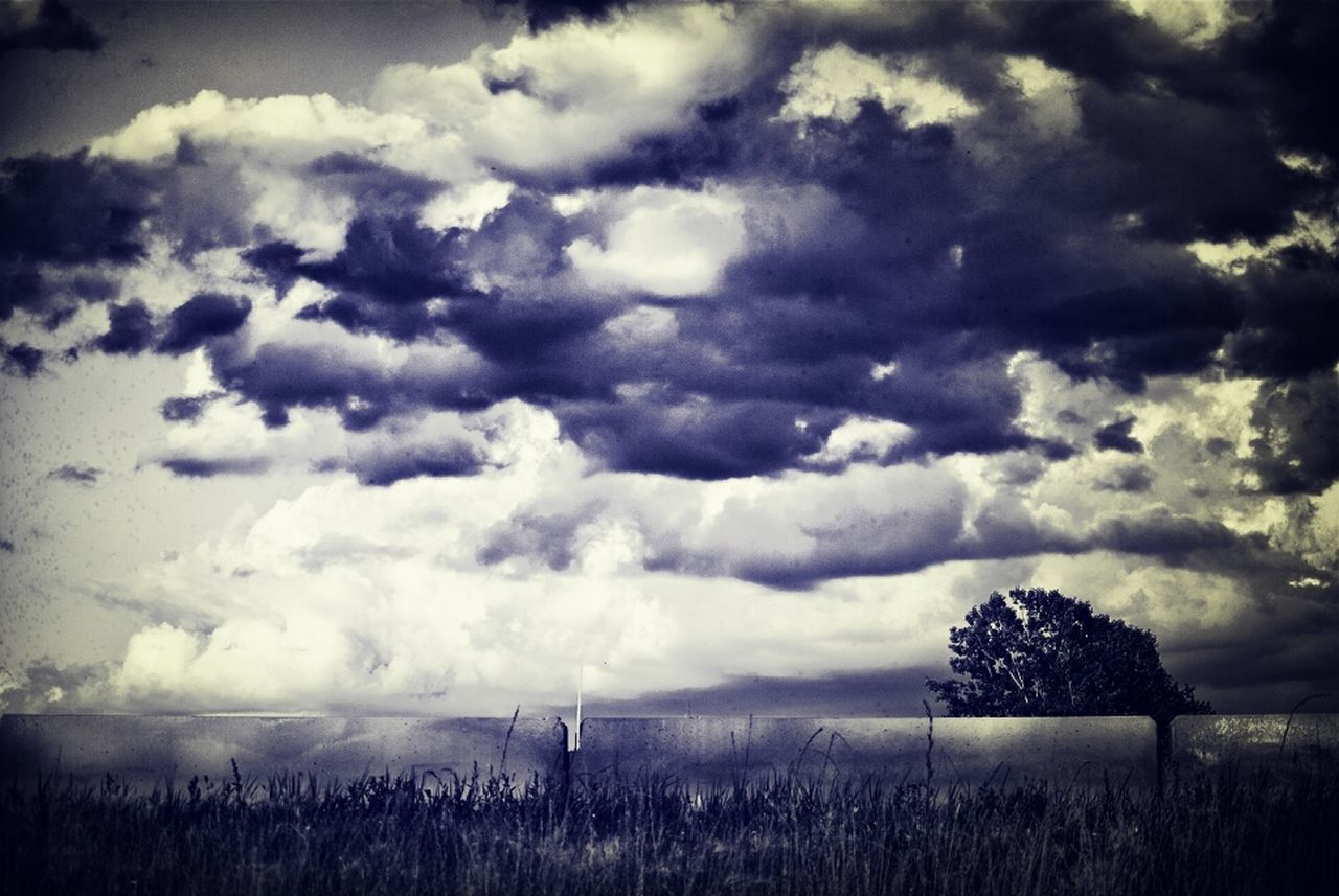 cloud - sky, sky, landscape, tranquility, nature, scenics, beauty in nature, tranquil scene, weather, field, outdoors, no people, day, tree, storm cloud